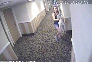 Hotel Theft Surveillance